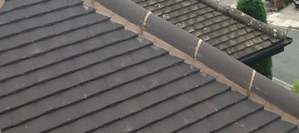 Ridge Cap Pointing and Repairs Dublin