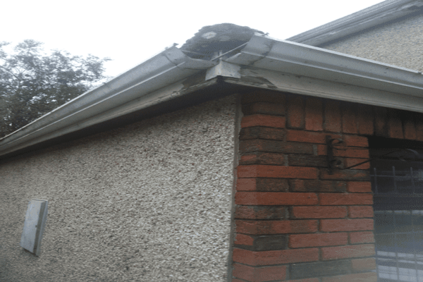 fascia Soffit Gutter-Replacement-in-Dublin
